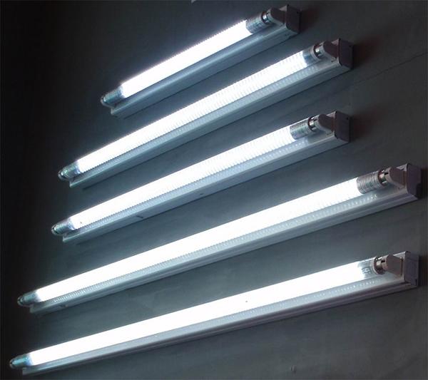 Đèn huỳnh quang cho ánh sáng rất tốt