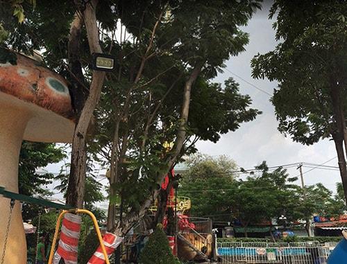 Đèn pha tại khu vực công cộng công viên Thỏ Trắng