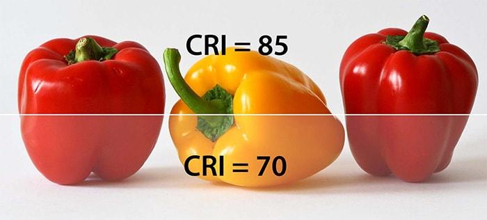 Hệ số hoàn màu ảnh hưởng đến màu sắc của vật