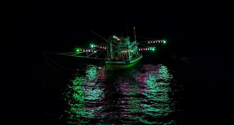 Màu sắc ảnh hưởng đến hiệu quả đánh cá