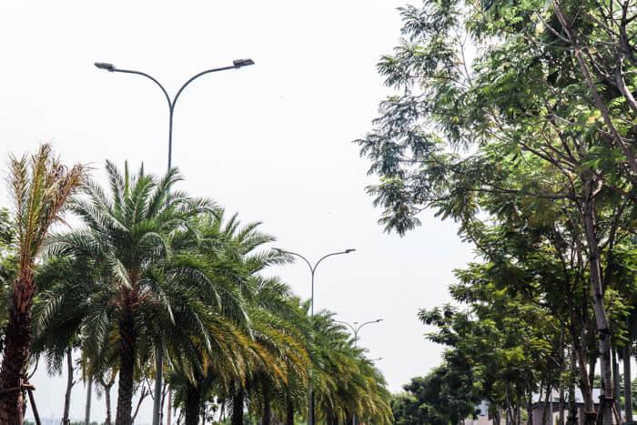 Đèn đường Philips được sử dụng trong Palm Garden Quận 2