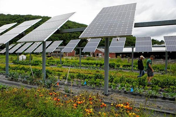 Mô hình điện mặt trời tại nông trại