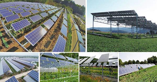 Năng lượng mặt trời và nông nghiệp